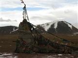 青藏高原上……