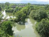 国内见闻--西溪湿地