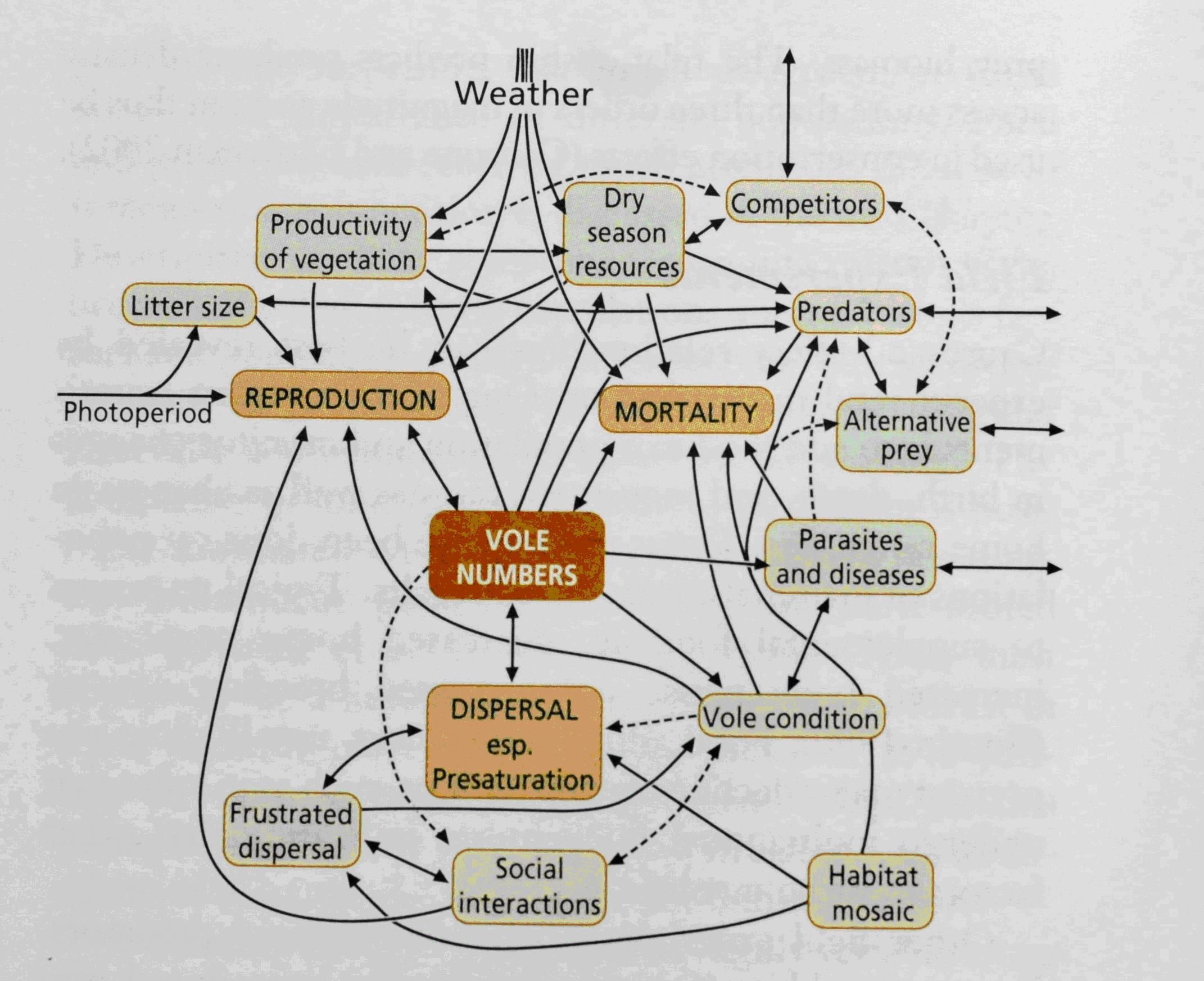 群落结构和生态系统稳定等不