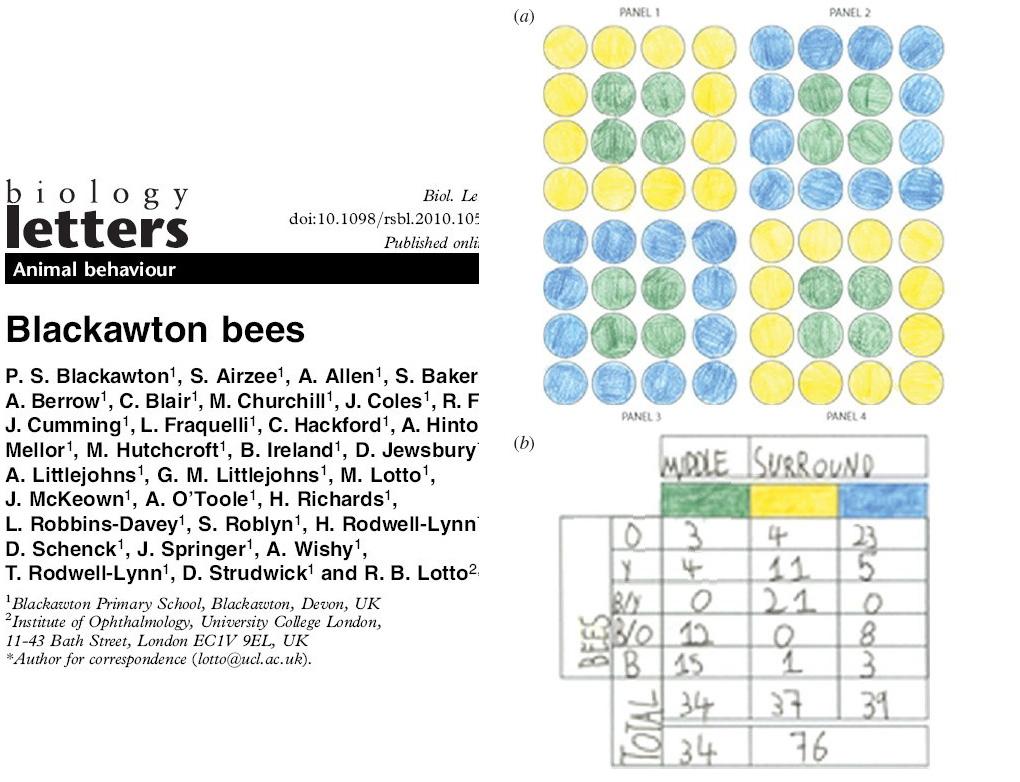 Blackawton bees-一群英国小学生的SCI - fhqdddddd - 流浪云南
