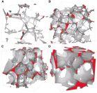部分熔融岩石的微区成像研究:地幔橄榄岩中的三维熔体分布