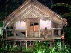 新加坡掠影(5)— 夜间野生动物园