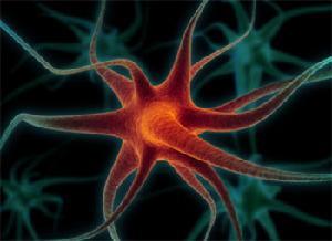 闪烁的互联网神经元 - 刘锋 - 互联网进化论--刘锋
