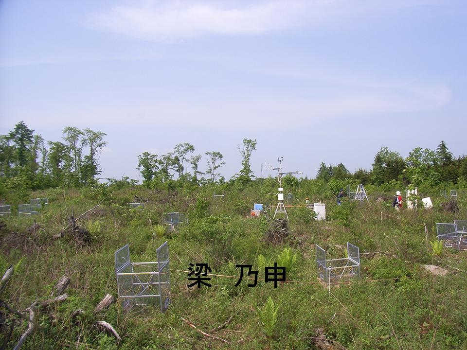 示意图:这是安装在日本北海道被台风吹倒后的森林的测定系统.
