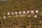 退耕还林功效如何? 结论是中国人疯了