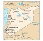 """叙利亚也是欧洲的""""油库"""""""