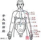 自学中医九:手太阴肺经