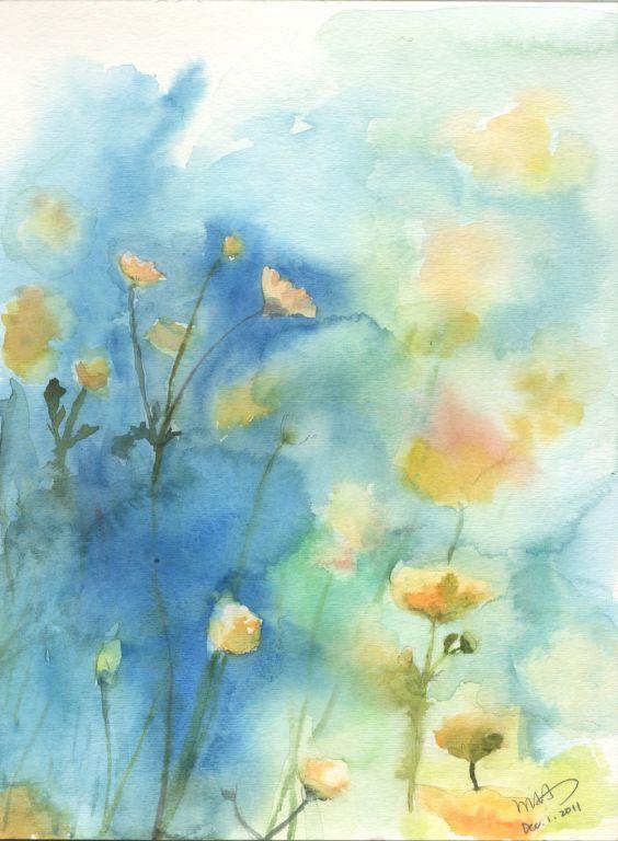 波斯菊水彩手绘