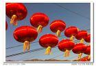 大红灯笼高高挂——手机拍摄的田仙峪村