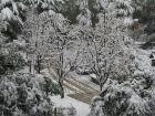 那年(2009)那天(11.12)我们在西安一起经历的那场雪