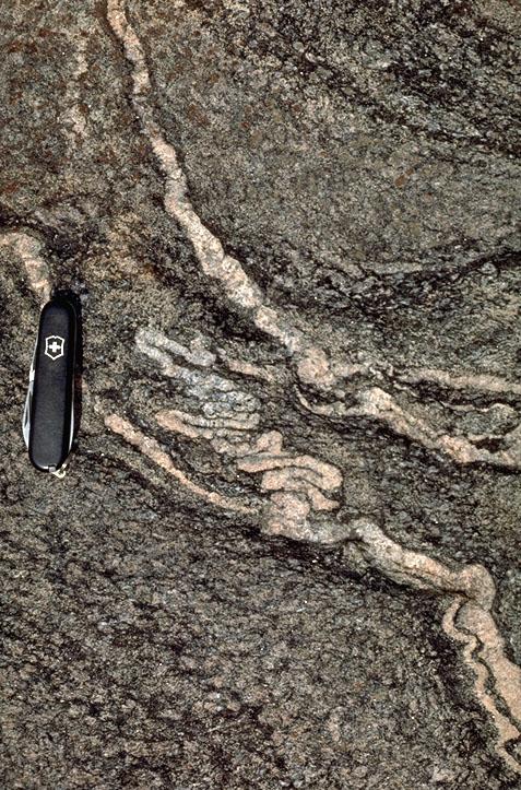 """地球的铁石心肠"""" - 探矿者           - Prospector blog"""