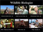 看看野外动物学研究者是干什么,这组图实在很经典