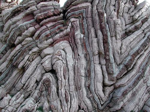 石头会显字 - 探矿者           - Prospector blog
