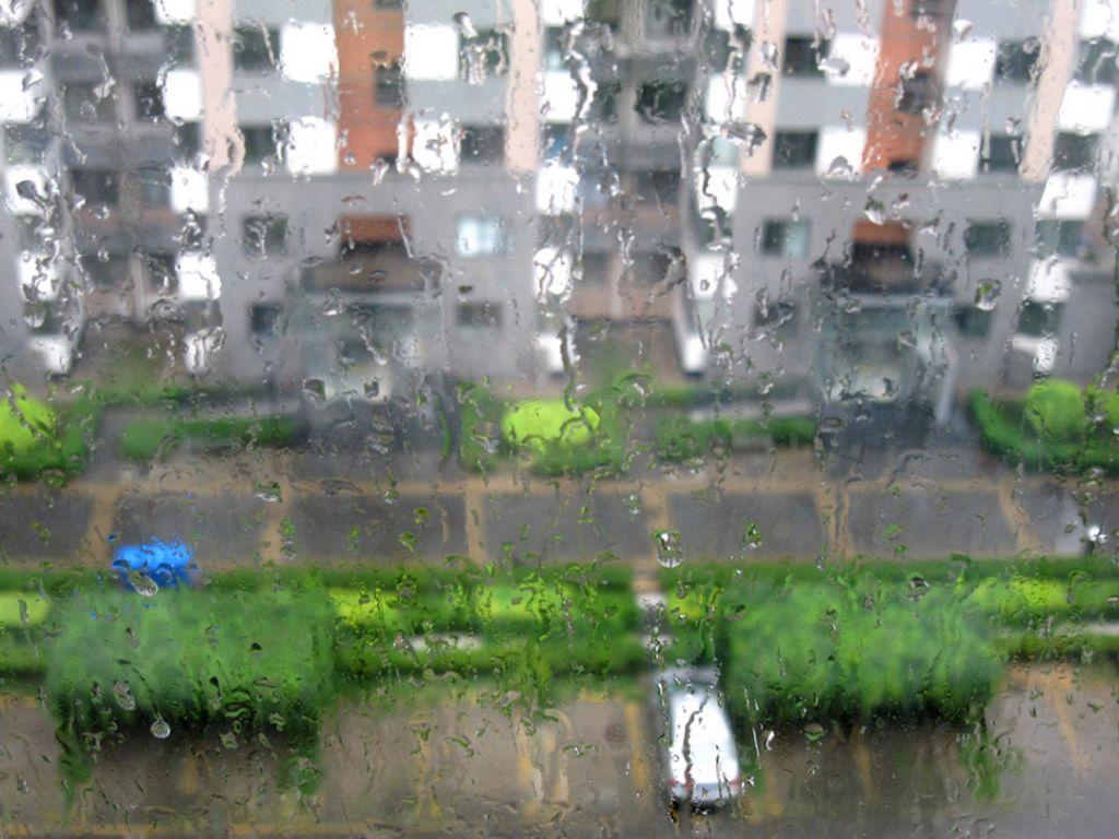 春天下雨的景色