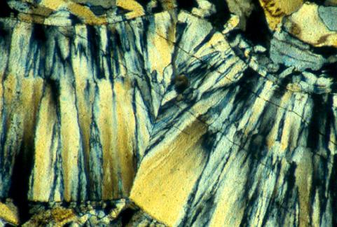 给我点水,我能把山抬起来 - 探矿者           - Prospector blog