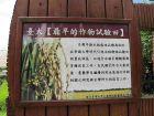 台湾大学的校园景观:最早的作物试验田