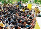 印度农民因抢购BT棉种发生踩踏事件受伤