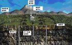 胜利油田微地震监测技术日趋成熟