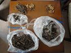 虫草之旅之三——我们的虫草和真假虫草辨别