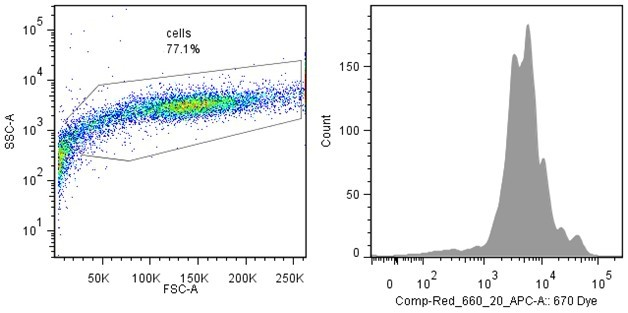 flowjo分析细胞增殖的步骤