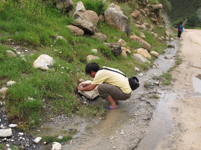 图51. 秃鹫  干热的怒江没有我们需要的虫子,继续走。八宿县城,不大,异常干热,我怀疑这个城市迟早要消失,至少得搬迁到其它地方。 再向高海拔走,到达安久拉垭口,这是我采集的重点地区之一,可惜仍是干旱。我们只找到死掉的甲虫一个,说明有分布,但数量稀少,大家商量决定明天到海拔更高的邻近地区采集。 图52(1).