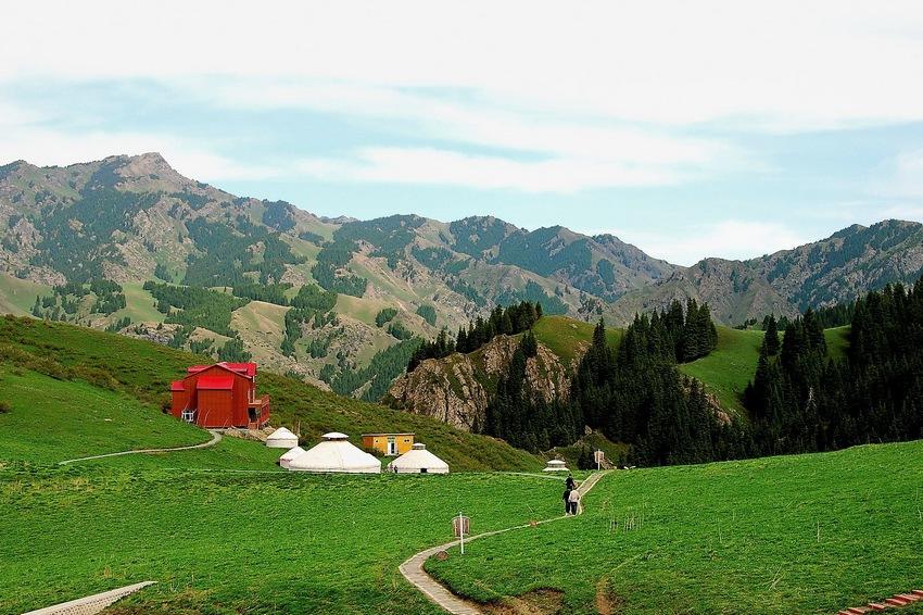 新疆南山夏天的风景