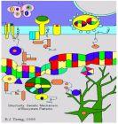 系统与合成生物学