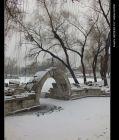 《脚下有路,行者无疆》之49:踏雪北京圆明园