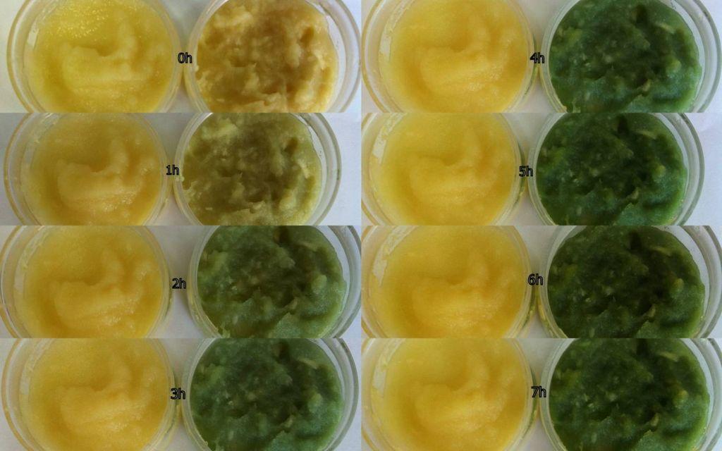 有机食品与普通食品质量差异分析——以有机大蒜为例 - 蒋高明 - 蒋高明的博客