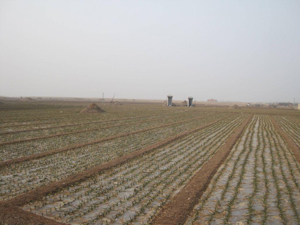 农村殡葬制度面临新难题 - 蒋高明 - 蒋高明的博客