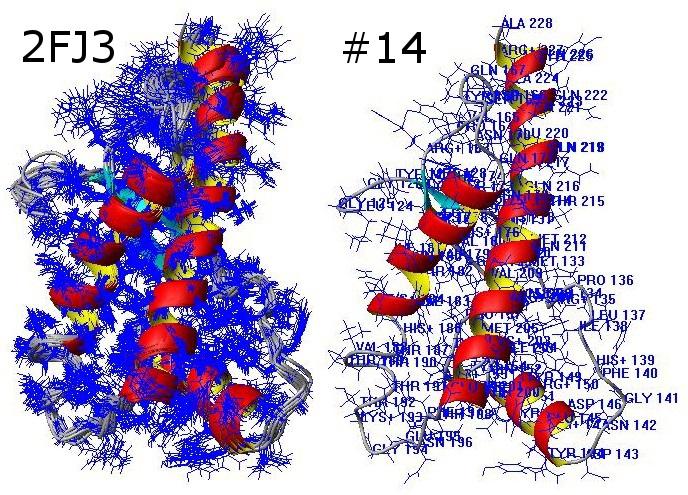 素来维持 护着蛋白质的三维结构 张家普的博文