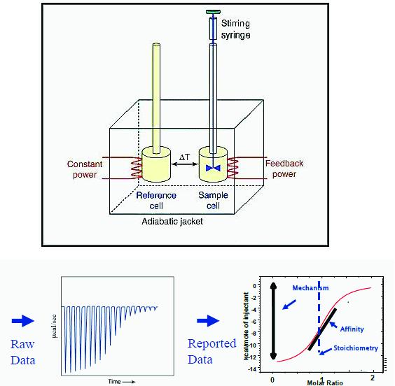 科学网—蛋白质研究的生物物理化学方法