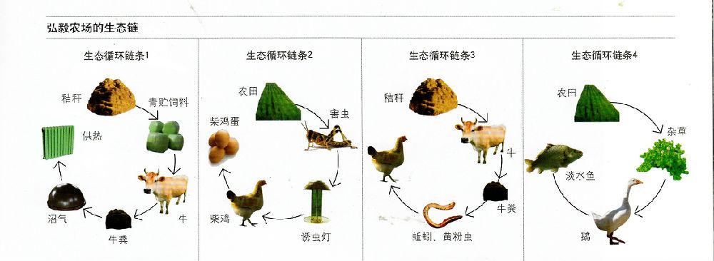 《生态农场纪实》连载之三十九:元素循环一笔账 - 蒋高明 - 蒋高明的博客