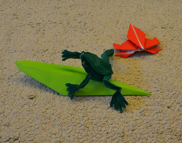 树叶贴画作品青蛙