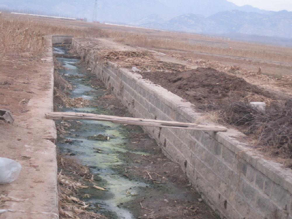 乡村调查之二:连地下水也不能喝了 - 蒋高明 - 蒋高明的博客
