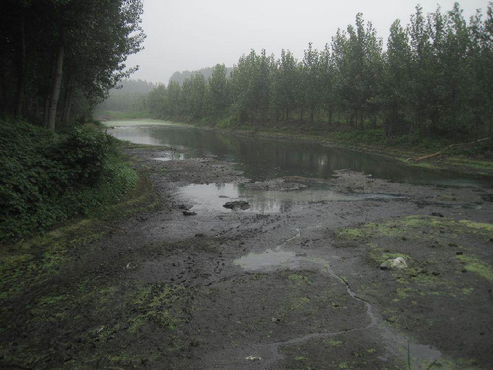 乡村调查之六:金线河变臭水沟 - 蒋高明 - 蒋高明的博客