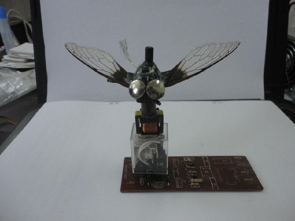 <微小飞机设计、制作>课程设计之《蝉儿也疯狂》