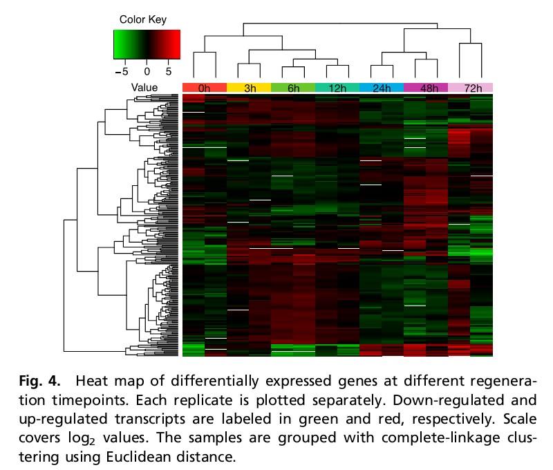 PNAS:PacBio平台完成扁形虫基因组测序,揭秘不老神话 - 云之南 - 云之南