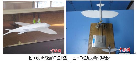 3D打印技术在微小飞机中的应用(科普.配图)