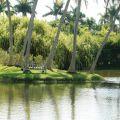 仙童植物园