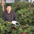 20110410郑州人民公园