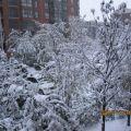 2009年西安初雪