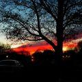 傍晚----有点儿凄凉的美丽(2014.01.13)
