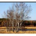 木兰围场-天星湖