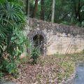 South China Botanical Garden, CAS