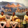 美丽的埃塞俄比亚(2012)