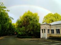 瞧花望云赏彩虹