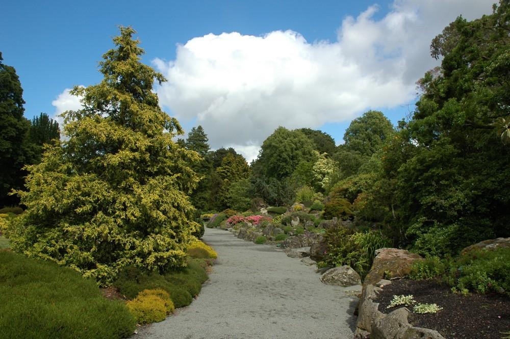 美丽新西兰(2):基督城植物园