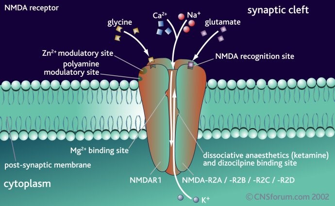 一氧化二氮为极性分子,与二氧化碳分子具有相似结构和电子式,其空间