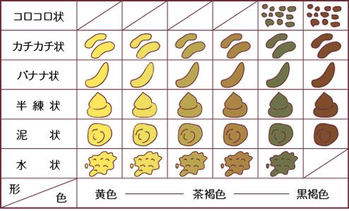 科学网—一坨香蕉便便,就是幸福…… - 宁利中的博文
